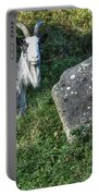 The Goat And The Stone Portable Battery Charger