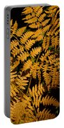 The Golden Fern Portable Battery Charger
