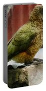 The Intelligent Kea Portable Battery Charger