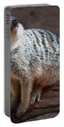 The Meercat  Portable Battery Charger