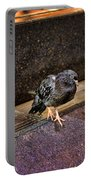 The Mighty Pigeon Portable Battery Charger