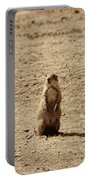 The Prairie Dog Portable Battery Charger