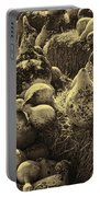 The Produce Of The Earth In Sepia Portable Battery Charger