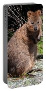 The Quokka Portable Battery Charger