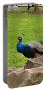 The Rocking Bird Portable Battery Charger