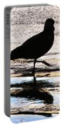 The Royal Society For Protection Of Birds Portable Battery Charger