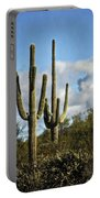 The Saguaros  Portable Battery Charger