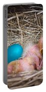 The Shimmering Blue Egg Portable Battery Charger
