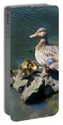 The Swimming Lesson Portable Battery Charger