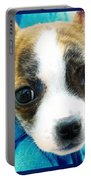 The Three Amigos Teacup Chihuahua Portable Battery Charger