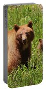 The Three Bears Portable Battery Charger