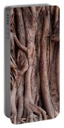 The Twisted And Gnarled Stump And Stem Of A Large Tree Inside The Qutub Minar Compound Portable Battery Charger