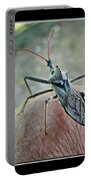 The Wheel Bug II Portable Battery Charger