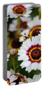 The White Field Portable Battery Charger
