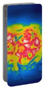 Thermogram Of A Hot Plate Of Spaghetti Portable Battery Charger
