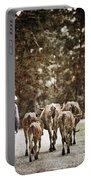 They Walk Together Portable Battery Charger
