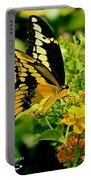 Thoas Swallowtail #1 Portable Battery Charger
