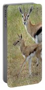 Thomsons Gazelle Portable Battery Charger