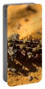 Thorny Devil Portable Battery Charger