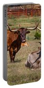 Three Amigos Portable Battery Charger