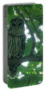 Three Barred Owls Portable Battery Charger