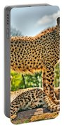 Three Cheetahs Portable Battery Charger
