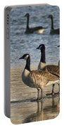Three Geese Portable Battery Charger