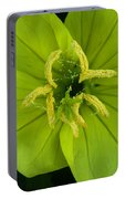 Three Lobed Evening Primrose Portable Battery Charger
