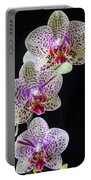 Three Orchids Portable Battery Charger