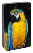 Three Parrots Portable Battery Charger