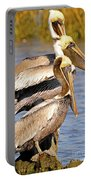Three Pelicans On A Stump Portable Battery Charger