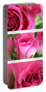 Three Pink Roses Landscape Portable Battery Charger