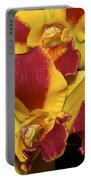 Three Yellow And Red Orchids Portable Battery Charger