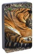 Tiger Behavior Portable Battery Charger