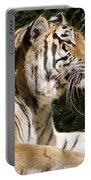 Tiger Observations Portable Battery Charger