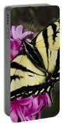 Tiger Swallowtail On Pink Hyacinth Portable Battery Charger