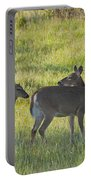 Time To Be On Your Own Son 5981 Portable Battery Charger
