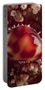 Tiny Cowrie Shell On Dendronephtya Soft Portable Battery Charger