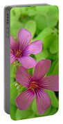 Tiny Flowers In The Clover Portable Battery Charger