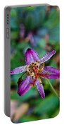 Toad Lilly 1 Portable Battery Charger