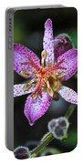 Toad Lily Portable Battery Charger