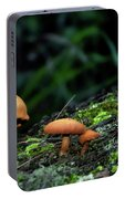 Toadstool Village Portable Battery Charger