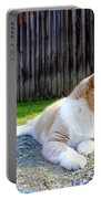 Toby Old Mill Cat Portable Battery Charger by Sandi OReilly