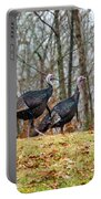 Tom Turkeys All In A Row 1 Portable Battery Charger