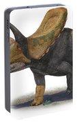 Torosaurus Latus, A Prehistoric Era Portable Battery Charger