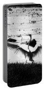 Touchdown-black And White Portable Battery Charger