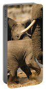 Tough Play 3 Portable Battery Charger