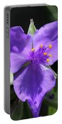 Tradescantia Named Andersonia Mauve Portable Battery Charger