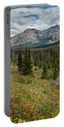 Trail Through Bear Country Portable Battery Charger