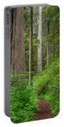 Trail Through Redwoods Portable Battery Charger